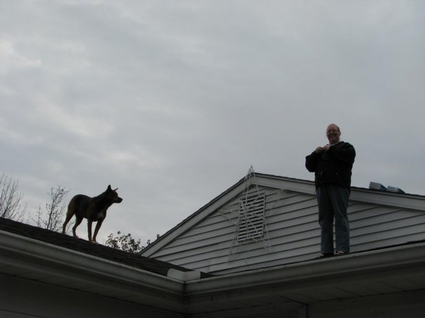 lola on the roof